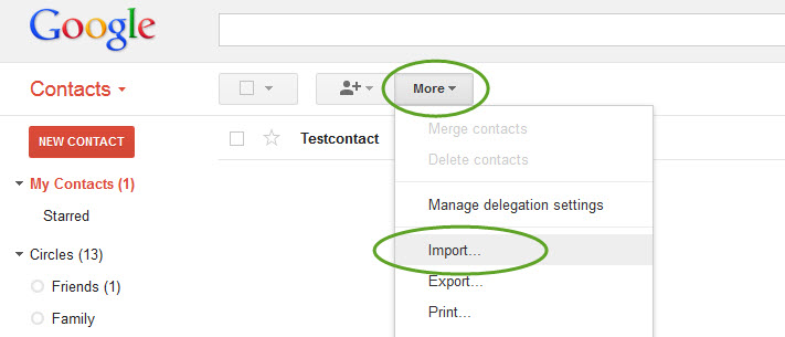 Import the CSV file in Google Contact